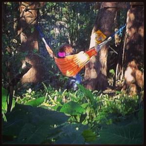Olivia hammock